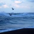 荒波の日本海を飛ぶ