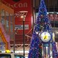 福井西武横クリスマスツリー